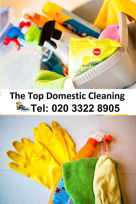 Domestic Cleaning House